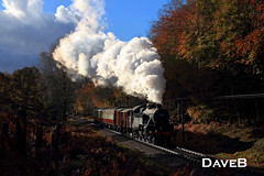 10th November 2016. Fairburn 42073 at the Lakeside & Haverthaite Railway. (Dangerous44) Tags: 42073 fairburn tank river leven steam locomotive engine lakeside haverthwaite railway