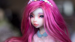 Shuri (DreamSight) Tags: raspberry bjd msd white skin nobledolls noble doll ball jointed pink alpaca wig urethane pastel cafeaulait