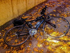 Project 365 Day 67 : Golden autumn cycling (pdion) Tags: krioneri   gr bicycle cycling autumn leaves fall mountain  parnitha