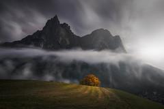 The Chosen One (albert dros) Tags: longexposure dolomites peaks tree travel dark albertdros mountains italy moody atmosphere