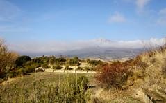 Tierras de laguardia (eitb.eus) Tags: eitbcom 16599 g121148 tiemponaturaleza tiempon2016 alava laguardia josemariavega