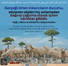 Kerim Kur'an 2-171 (Oku Rabbinin Adiyla) Tags: allah kuran islam ayet verse god religion bible muslim rahman islamic hadis holybook book holyquran