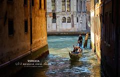there is still a light (Bazalai) Tags: venice veneza venise venecia venezia venedig velence feneyjar venedik   veneti vencija venecija wenecja vencia venetsia  fenis  bentky benetke veneetsia venezja    mariusvasiliu terradesign bazalai   venecio venetiis venesiya      benesiya veneia veneziako