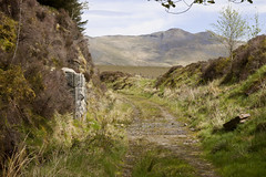 Old bridge abutments (Martin Pritchard) Tags: walk railway line cwm bala trawsfynydd prysor