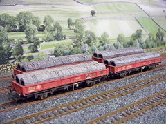 CAMBRIAN_SPA (37686) Tags: oo gauge wagons