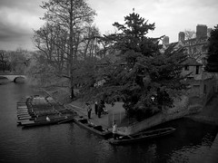 Photo (Daniel Pietzsch) Tags: uk cambridge england lumix photos g punts punters dmcgf1 14f25 lumixg14f25
