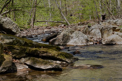 Babbling Brook (GRO Photography) Tags: fishing stream brook trout