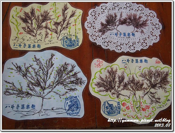 八斗子藻樂趣(98)