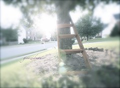 New...way of escaping the suburbs (g.zeidman) Tags: tree escape dream ladder