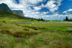Mt Lidgbird (L), Mt Gower (R) & Lord Howe Island Airport From Blinky Beach Sand Dunes, NSW, Australia (Black Diamond Images) Tags: beach clouds island airport scenic australia terminal nsw runway senecio lordhoweisland senecioelegans wildcineraria thelastparadise blinkybeach lordhoweislandairport southlagoonbeach