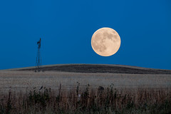 Moon Rise (Tom Yamamoto) Tags: california blue moon landscape hour rise hollister