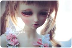 Momoko ( n a o m i) Tags: baby japan doll sweet lolita bjd dollfie abjd msd momoko btssb jsk