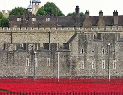 Poppies and the Walls (jere7my) Tags: greatbritain vacation england london castle history stone memorial unitedkingdom wwi treasury historic prison worldwari poppies soldiers walls fortifications moat fortress chimneys englishhistory arrowslits toweroflondon veterans artinstallation 1066 casualties commemoration 2014 centenary royalmint wardead thetoweroflondon crenelations oldstone tompiper hermajestysroyalpalaceandfortress paulcummins towerpoppies bloodsweptlandsandseasofred 888246 ceramicpoppies