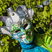 """2015_Costumés_Vénitiens-44 • <a style=""""font-size:0.8em;"""" href=""""http://www.flickr.com/photos/100070713@N08/17829972072/"""" target=""""_blank"""">View on Flickr</a>"""