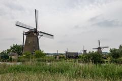 Kinderdijk073 (Josh Pao) Tags: kinderdijk    rotterdam  nederland netherlands  europe