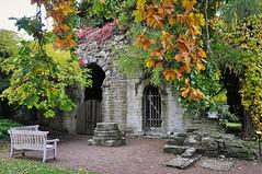 Sankt Olofs kyrkoruin, Botaniska trädgården, Visby, Gotland (Bochum1805) Tags: ruin churchruin medieval botanicalgarden visby botan