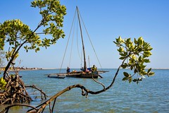 Fishing Boat (Rod Waddington) Tags: africa african afrika afrique madagascar malagasy fishing boat mangrove mozambique channel traditional water