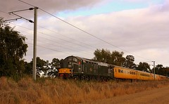Overcast at Nether Hall (Chris Baines) Tags: colas 37057 nether hall essex network rail test train