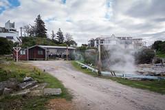 Rotorua Hot Springs-20