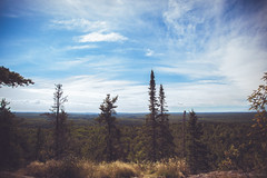 Overlook at Eagle Mountain, MN (michaelraleigh) Tags: landscape f28l serene highquality mountains eaglemountain 2035mm summit pinetrees clouds sun morning superiornationalforest statepark sky beautiful secluded infocus boundarywaters park outdoors bwca mountain canon green minnesota
