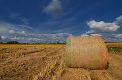 Hay flag (Stievesox) Tags: hay flag italy balla rural rurale paesaggio landscape sky polarized polarizzatore filtro filter clouds nuvole cielo lombardy lombardia italia nice beautiful wet ground weather countryside campagna