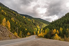 Autumn Colours (RussellK2013) Tags: explore trees highway britishcolumbia canada scene scenery scenicsnotjustlandscapes scape scenic autumn fall road landscape nikon nikkor nature ngc 1635mmf4ged wideangle clouds foliage 2016 d750 osoyoos travel