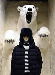 Harvey Nichols (Treble2309) Tags: harveynichols knightsbridge polarbear