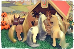 In this season of ThanksgivingWe welcome with love our beautiful new addition. Our bundle of joy is here at last! (violet-pegasus) Tags: sylvanianfamilies calicocritters   miniatures dollhouse thanksgiving seasonofthanks welcomewithlove beautiful newaddition bundleofjoy horse pony foal