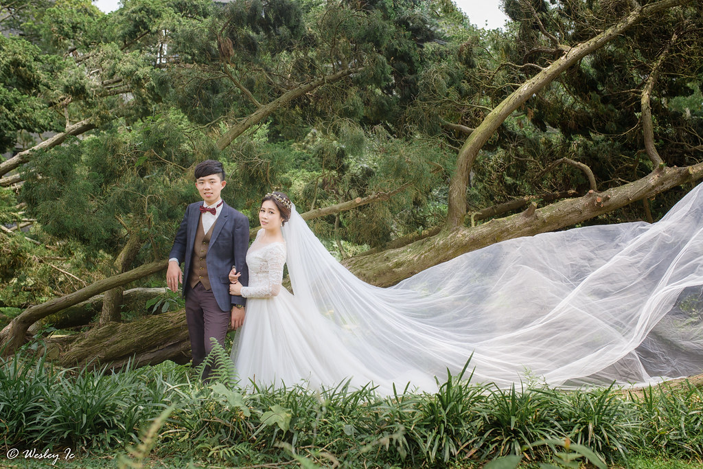 """""""""""婚攝,自助婚紗,自主婚紗,婚攝wesley,婚禮紀錄,婚禮攝影""""'LOVE11493'"""