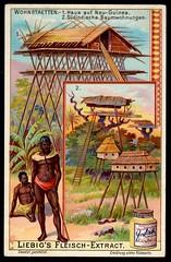 Liebig Tradecard S753 - Dwellings in New Guinea and Sudan (cigcardpix) Tags: tradecards advertising ephemera vintage liebig chromo architecture