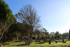 (C*Fletcher) Tags: isleofwight totland graveyard