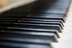Montsalvat 2016-11-12 (5D_32A1224) (ajhaysom) Tags: montsalvat eltham melbourne australia canoneos5dmkiii canon24105l piano ivories