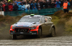 Wales Rally GB 2016 (Enda Healy) Tags: wales rally gb 2016 wrc world championship 555 rallying weslh forests gravel mud dirt fog rain mist drift slide power jump fod vw citroen hyundai i20 polo fiesta ogier breen meeke sordo paddon tanak lappi cars fast action nikon d750 nikkor