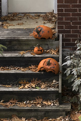 Past Due (rumimume) Tags: potd rumimume 2016 niagara ontario canada photo canon 550d t2i sigma pumpkin jol decay rot orange after letdown