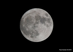 WW2_8683 (Bluedharma) Tags: bluedharma colorado coloradophotographer coloradoshooter supermoon moon 2016 paulgordon