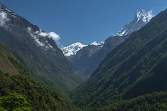 Looking up the Modi Khola Valley (Stewart Miller Photography) Tags: annapurna base camp trek machapuchare modi khola