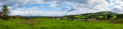 Lakes Pano 2 (Jon°) Tags: sonyrx100 sony cheshire rx100 delamere bike bikeride santa cruz santacruz bronson carbon vehicle bicycle seat wheel outdoor october 2016 landscape field plain grass plant sky grassland tree forest