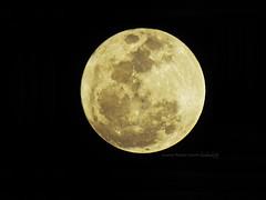 Super Moon @ TTI (badrule35) Tags: supermoon taman tamadun islam kuala terengganu tti masjid kristal supermoonatmasjidkristal tamantamadunislam pulauwanman kualaterengganu lunar full moon