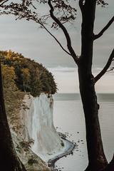 DSC02558 (Ricardo Fischer) Tags: sony sonyalpha alphaddicted sonya6000 rgen kreidefelsen sassnitz nationalparkjasmund nationalpark germany deutschland wirsindinsel a6000 balticsea outdoor nature ocean