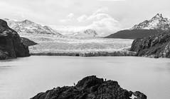 Grey Glacier (Nefrenka) Tags: torresdelpaine chile patagonia glaciar glaciargrey
