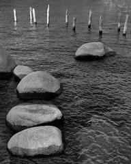 Skunk Harbor Rocks and Pier PB250901_DxO copy smart copy (pringlek) Tags: tahoe rocks skunkharbor bw pier