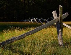 Fence posts (Tim Ravenscroft) Tags: fence posts traditional wood blueridgemountains northcarolina usa