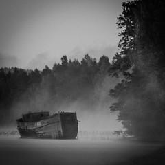Wreck (mattias.ljunggren) Tags: bw dimma fog monochrome svartvitt vatten vrak water wreck