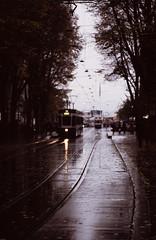 11.11.16-AgfaphotoPrecisaCT100-LeicaIIIf-CanonSerenar50f1.8-23 (dannbis) Tags: 135 135mm agfaphotoprecisact100 analog bokeh canon50mmf18ltm canonserenar50mmf18 leicaiiif rainy schweiz switzerland telelens tram zurich zürich アナログ フィルム ライカiiif レンジファインダー 旁轴 胶片 exif:model=proscan7200 exif:make=reflecta geocountry camera:make=reflecta geolocation geocity geostate camera:model=proscan7200