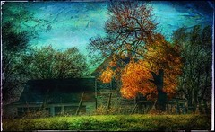 Autumn chill... (Sherrianne100) Tags: rural textured autumn dilapidated oldhouse ozarks missouri