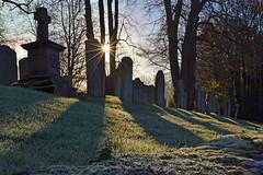 November Frost (AndyorDij) Tags: frost frosty stpeterschurchinempingham empingham england rutland uk unitedkingdom andrewdejardin autumn trees tree grass gravestones shadows ice