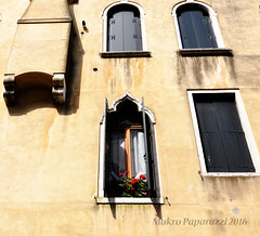Veneto VI (Makro Paparazzi) Tags: venecija venice venezie venezia veneto italy italija italia europe evropa eurotrip wideangle windows prozori flowers cvece wall zid travelphotography nikon nikond7000 tokina tokinaatxpro1224mmf4ifdxii outdoor