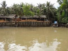IMG_3346 (program monkey) Tags: vietnam mekong river delta cargo boat ben tre tra vinh coconut processing