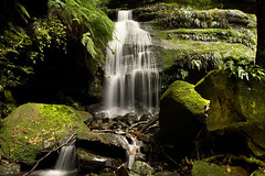 Mt Wilsons lower waterfall (Explored) (edwinemmerick) Tags: longexposure nature photoshop canon landscape eos waterfall moss rocks stitch australia bluemountains le nsw slowshutter ferns edwin 20s mtwilson cs3 emmerick edwinemmerick