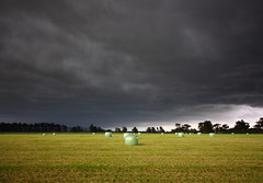 Bale Out (Hooplabean) Tags: new green field sigma zealand nz hay bale 1020 martinborough wairarapa